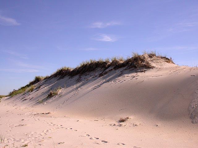 Sand Dunes iamtonyang.com